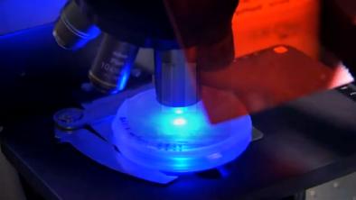 Nanovlákna - Lešení pro buňky